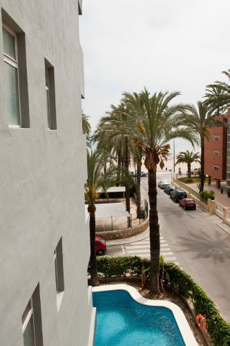 Hotel El Palmeral photo 47