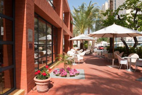 Hotel El Palmeral photo 50