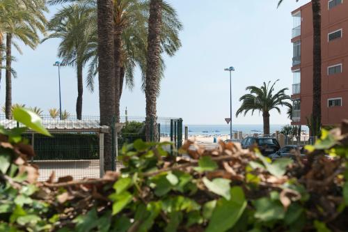Hotel El Palmeral photo 57