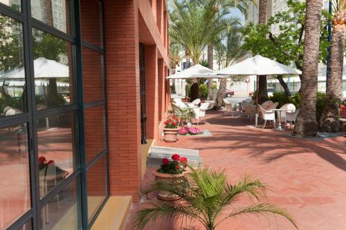 Hotel El Palmeral photo 58