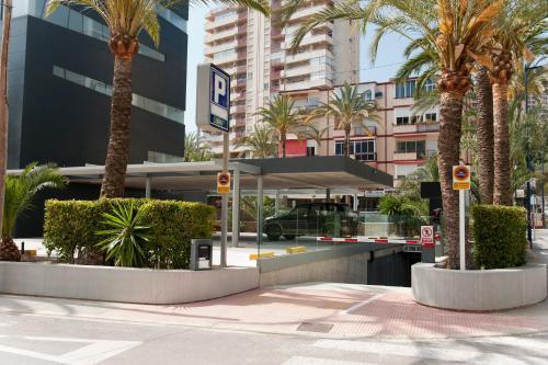 Hotel El Palmeral photo 60