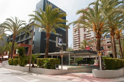 Hotel El Palmeral photo 62