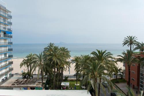 Hotel El Palmeral photo 67