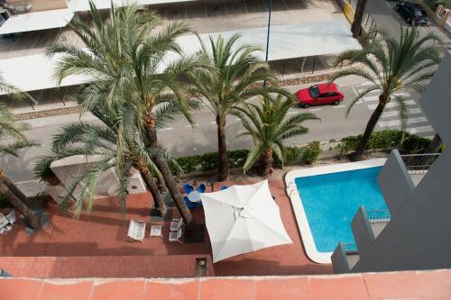 Hotel El Palmeral photo 68