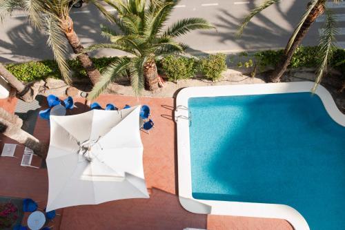 Hotel El Palmeral photo 72