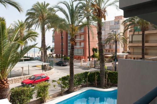 Hotel El Palmeral photo 73
