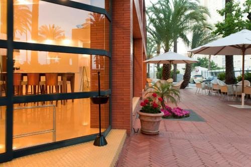 Hotel El Palmeral photo 97