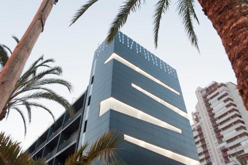 Hotel El Palmeral photo 99