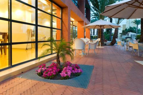 Hotel El Palmeral photo 102