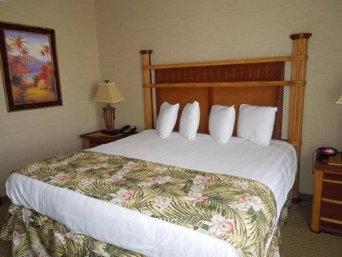 Maui Sands Resort & Indoor Water Park Photo