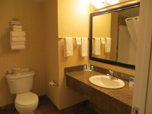 Comfort Inn & Suites Edson Photo