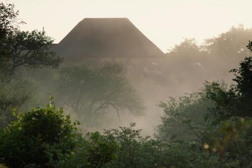 Naledi Bushlodge and Enkoveni Camp Photo