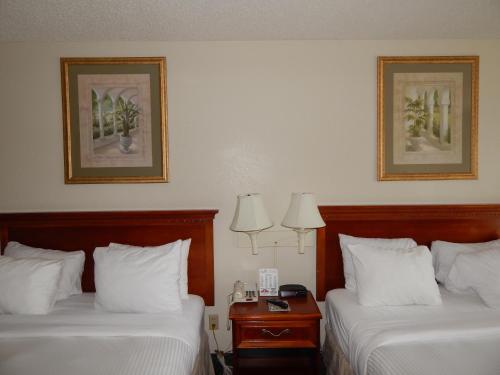 Paradise Plaza Inn Photo