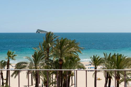 Hotel El Palmeral photo 1