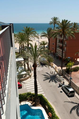 Hotel El Palmeral photo 113