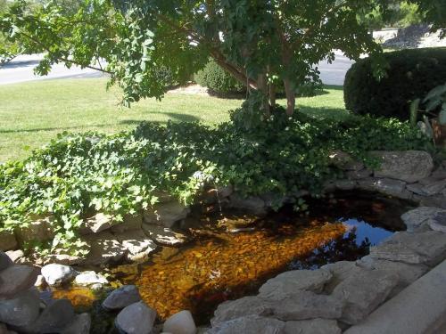 Lodge At The Falls Photo