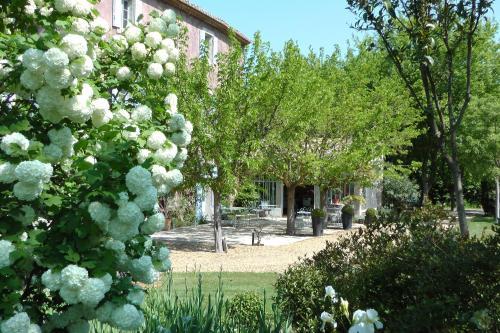 Bastide Rose - 26 of 59