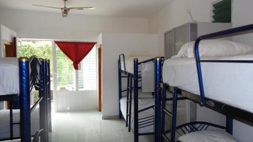 The Amazing Hostel Sayulita Photo