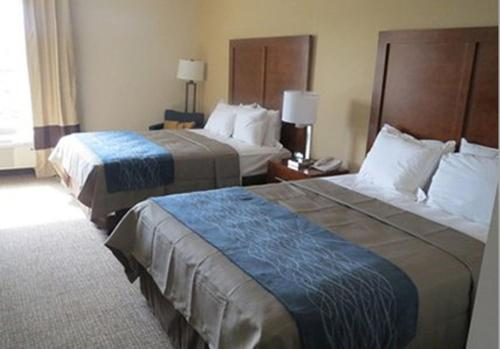 Comfort Inn Apalachin Photo