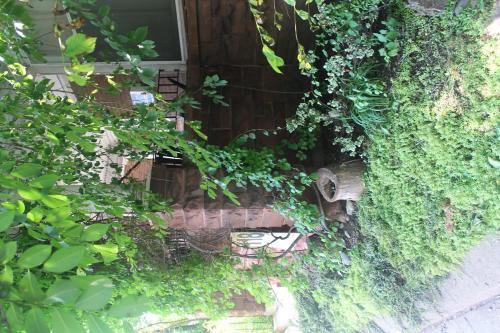 Havinn International Guest House - Toronto, ON M5R 2T8