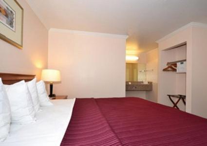 Quality Inn & Suites Gilroy Photo