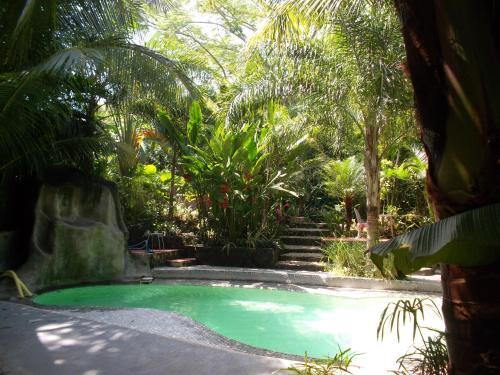La Tropicale Photo