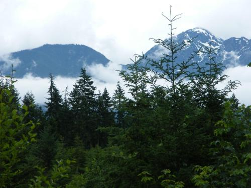 Rooster Hill Guest House - Port Angeles, WA 98363