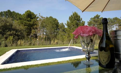 Suite deluxe with private pool  Hotel Boutique Pinar 132