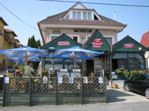 Hotel-overnachting met je hond in Aranyszarvas-Goldener Hirsch Pension - Zalakaros