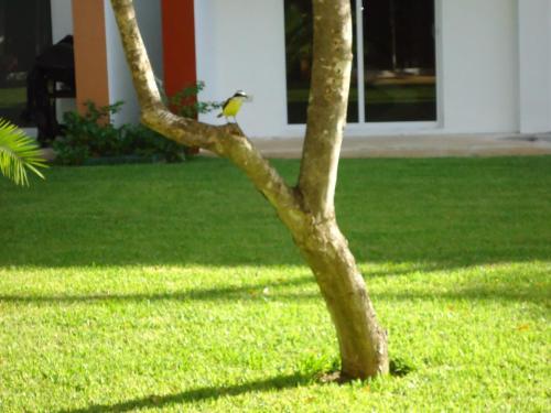 Casa Sol Photo