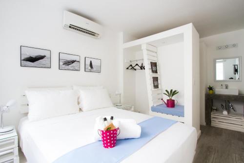 Hotel Gatto Blanco & Rooftop Club Photo