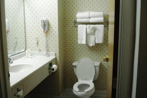 Comfort Inn & Suites Geneva Photo