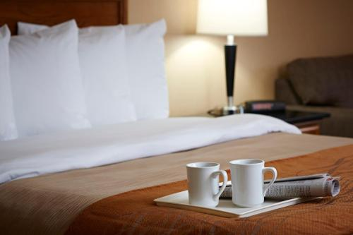 Comfort Inn Saskatoon Photo