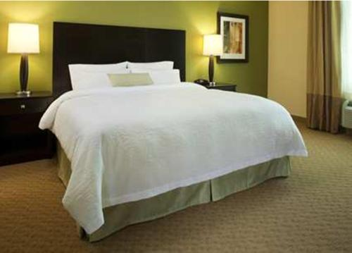 Hampton Inn & Suites Albany