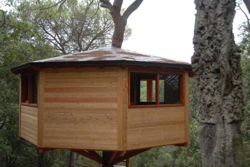 Cabanes Dosrius photo 11