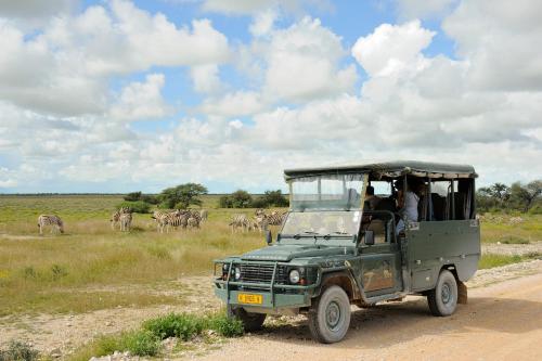 On the C38 Road from Outjo to Okaukuejo, Southern Etosha, Namibia