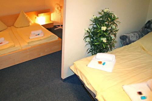 Hotel Comenius photo 2