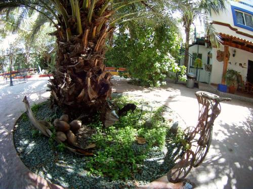 Hacienda Paraiso de La Paz Photo