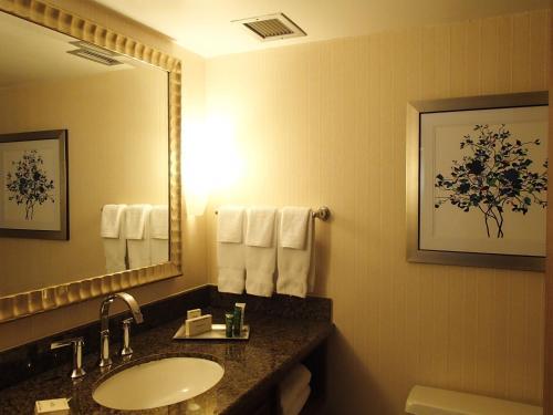 Hilton Arlington Photo