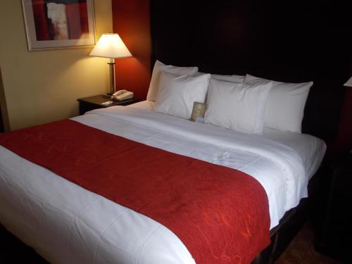 Comfort Suites Spring - Spring, TX 77373