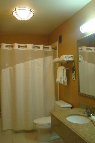 Holiday Inn Express Hotel & Suites New Albany - New Albany, MS 38652