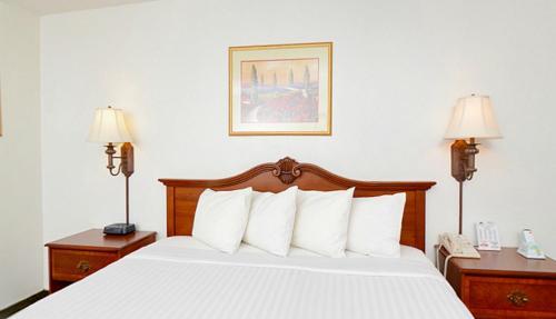 Econo Lodge Inn & Suites Photo