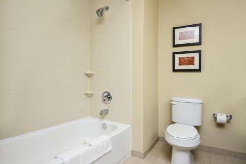 Comfort Suites Photo