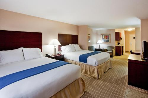 Holiday Inn Express Hotel & Suites Mcdonough - McDonough, GA 30253