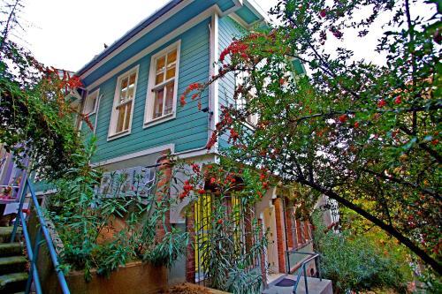 Istanbul Dreamer`s B&B tatil