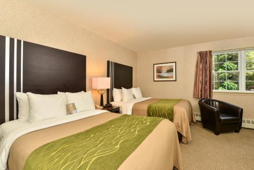 Comfort Inn Halifax Photo
