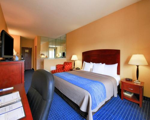 Comfort Inn and Suites North East Photo