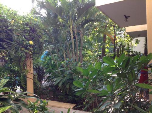 Hotel Palmeras Photo