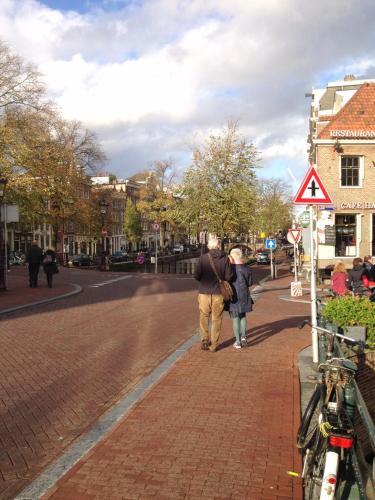 Blue Tulip Amsterdam photo 3