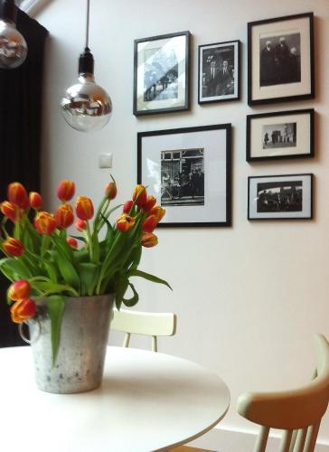 Blue Tulip Amsterdam photo 4